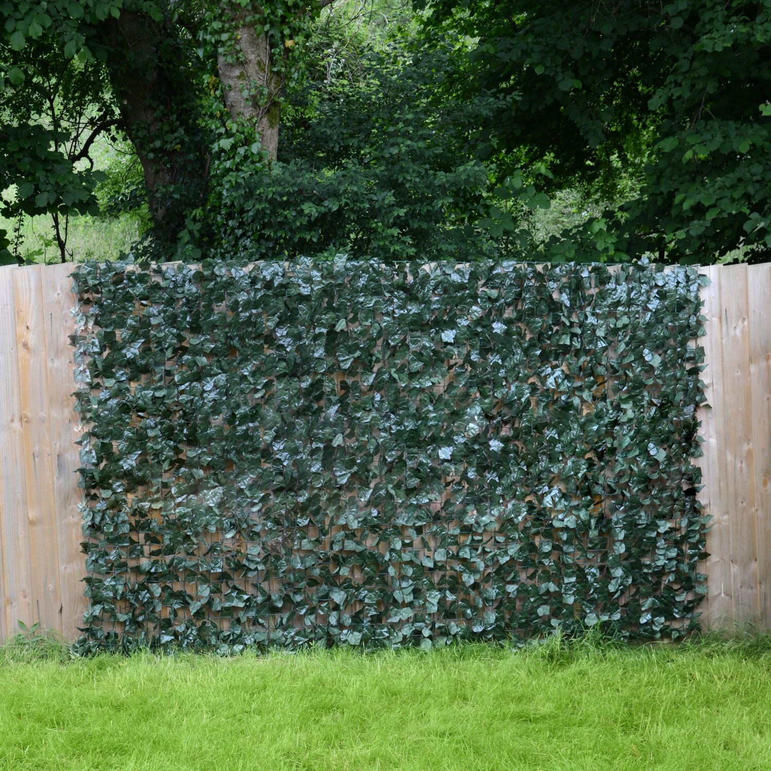 Image of Artificial Ivy Leaf Hedge Roll (1.5m x 3m)