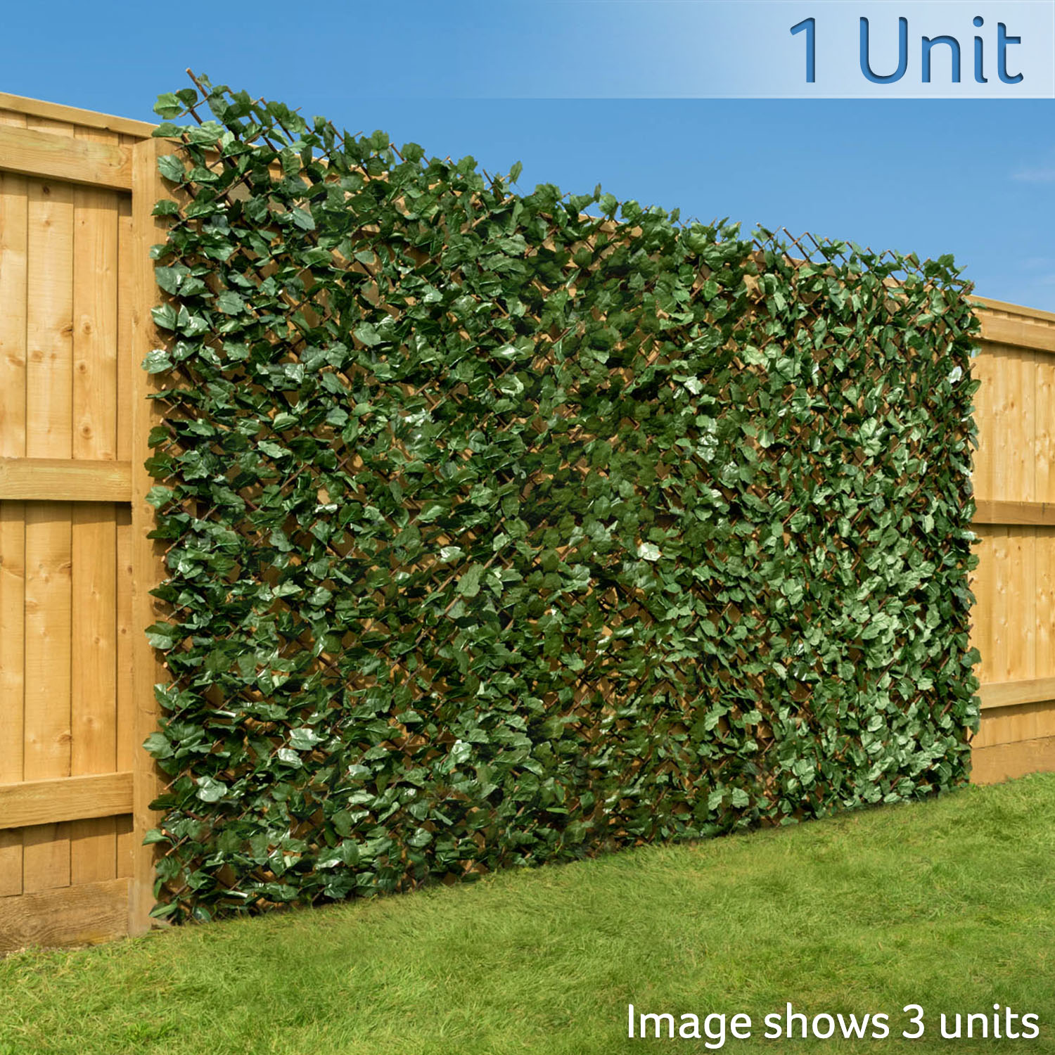 Image of Trellis With Ivy Leaves (1m x 2m)